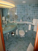Handicap Accessible Sink and Toilet