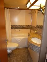 Tub sink toilet